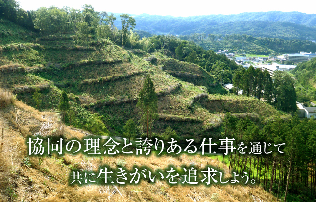 鳥取県東部森林組合|植林から間...
